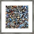 Stones And Seashells Framed Print