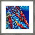 Stoplight Parrotfish Framed Print