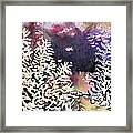Submerged Crystals Framed Print