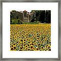Summer Bliss Framed Print by France  Art