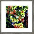 Summer Hiking Trail 1  Framed Print