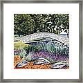 Summer In Doty Park Framed Print