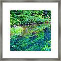 Summer Monet Reflections Framed Print