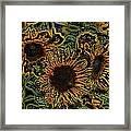 Sunflower 18 Framed Print