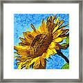 Sunflower Abstract Framed Print by Unknown
