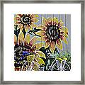 Sunflowers And Bicycle Framed Print