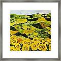 Sunflowers And Sunshine Framed Print