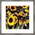 Sunflowers In Blue Bowls Framed Print