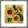 Sunflowers On Wooden Board Framed Print