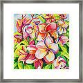 Sunlit Plumeria Framed Print