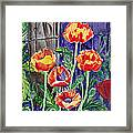 Sunlit Poppies Framed Print