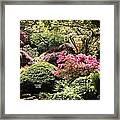 Sunny Japanese Garden Framed Print