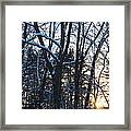 Sunset Behind The Trees Framed Print