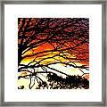Sunset Tree Silhouette Framed Print