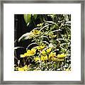 Sunshine Flowers Framed Print
