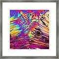 Surfin' Safari Framed Print