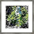 Surrounded With A Wreath Of Love Framed Print