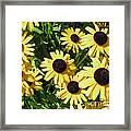 Susans Black Eye #1 20140831 Framed Print
