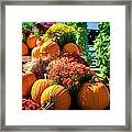 Sussex County Farm Stand Framed Print