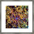 Suzanne 3 Framed Print
