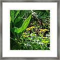 Swamp Bouquet Framed Print