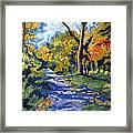 Swan Creek Pathway Framed Print