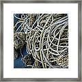 Tangles Of Seaweed 2 Framed Print