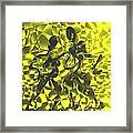 Tango In Yellow Framed Print