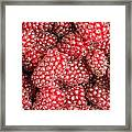 Tayberries  Framed Print