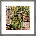 Temple Ruins 05 Framed Print
