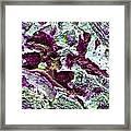 Texture No.7 Effect 9 Framed Print