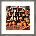 Thanksgiving Pumpkin Display No. 2 Framed Print