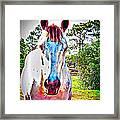 That Horses Face Framed Print