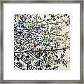 The Almond Tree Framed Print