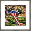 The Auburn Tiger Framed Print