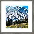 The Beautiful Mount Rainier At Sunrise Park Framed Print