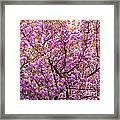 The Color Purple 2 Framed Print
