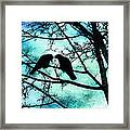 The Courtship Of Crows Framed Print