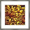 The Daughter Of The Sea's Bright Carpet Framed Print