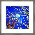 The Day The Moon Stayed Out All Day Framed Print