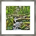 The Emerald Forest 3 Framed Print