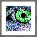 The Eyes 8 Framed Print