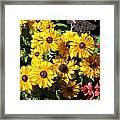 The Flower 16 Framed Print