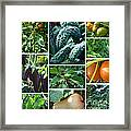 The Garden Framed Print