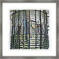 The Glass Beehive  Framed Print