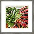 The Hen And Her Chicks  Framed Print