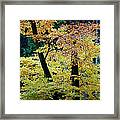 The Joy Of Being In Autumn Framed Print