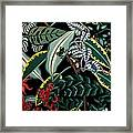 The Jungle Framed Print by Anthony Morris