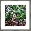 The Lamp Post Framed Print