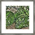 The Mossy Creatures Of The Old Beech Forest Framed Print
